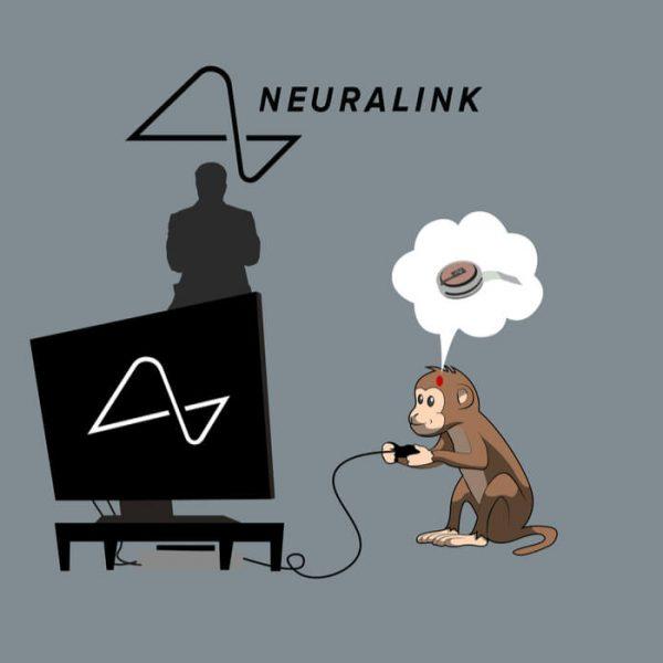 neuralink grająca małpa